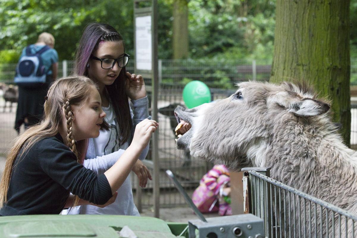 Tiergehege im Kaisergarten