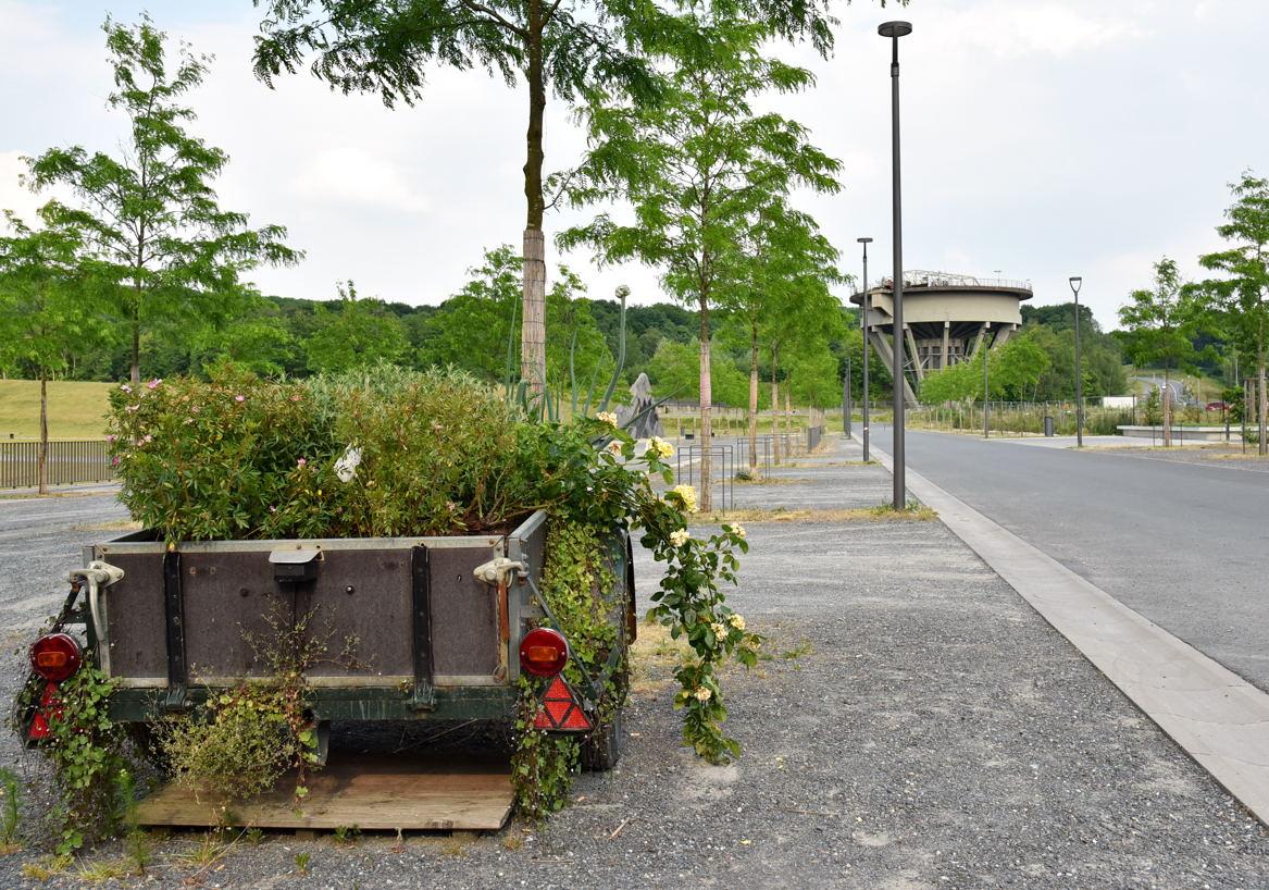 Bergpark in Dinslaken-Lohberg