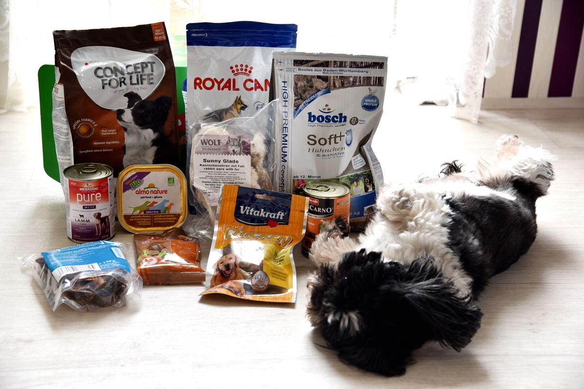 Die Frühlingsbox für Hunde von zooplus
