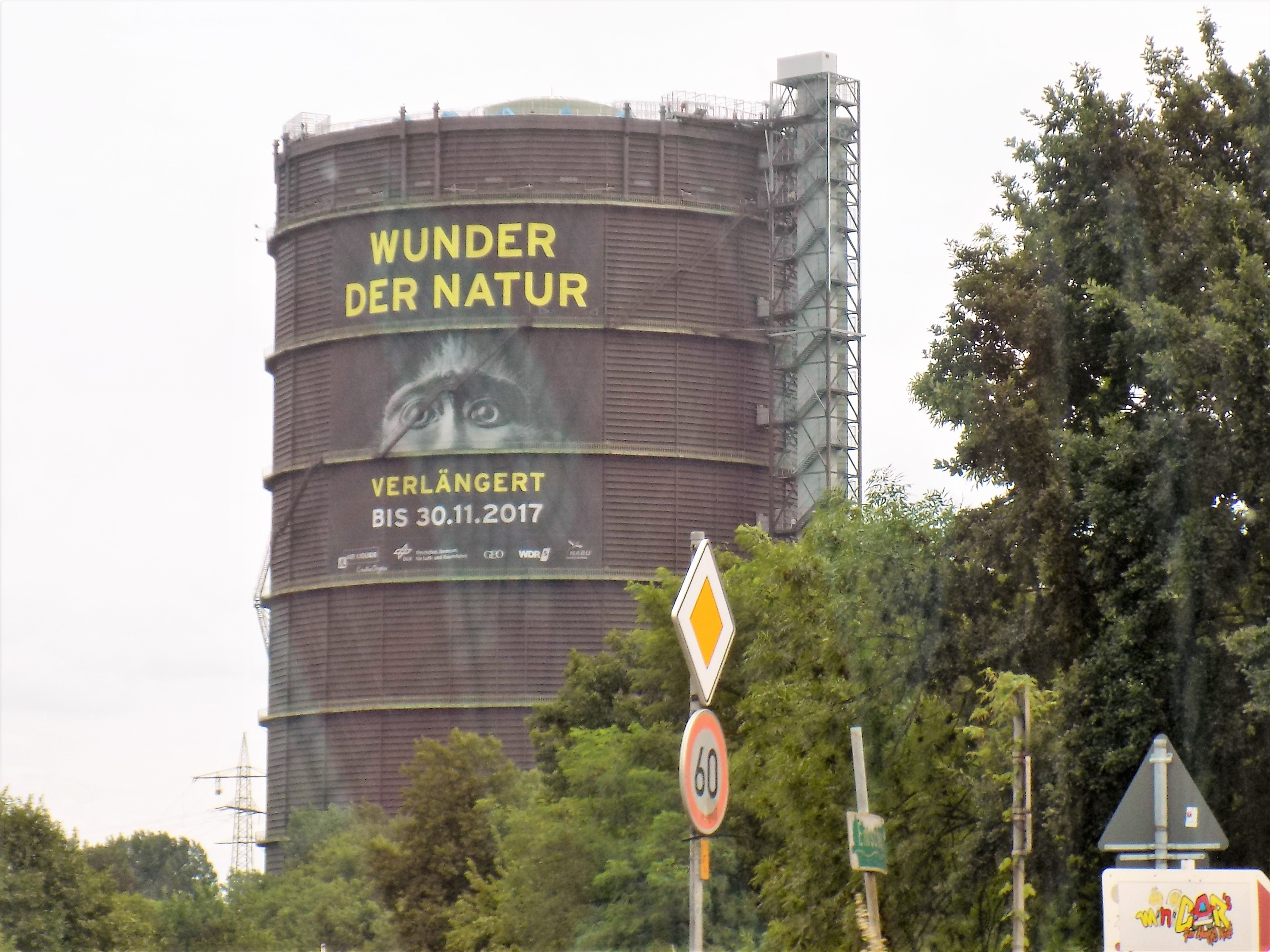 Gasometer Oberhausen: Wunder der Natur